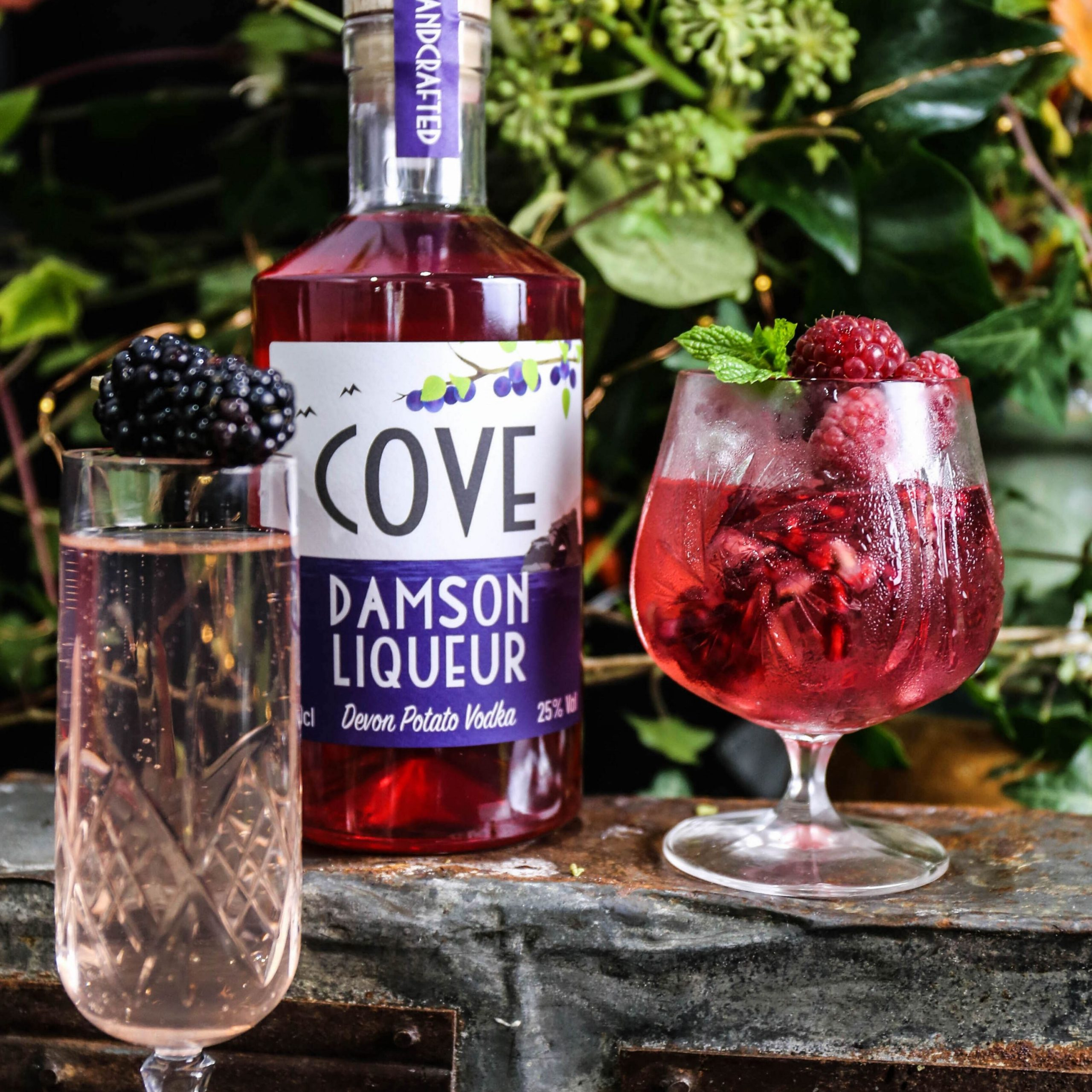 Damson Liqueur served with bubbly